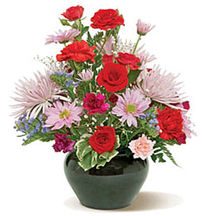 Send gifts for girlfriend who live in canada ferns n petals pretty palette cnd gifts to canada for girlfriend mightylinksfo