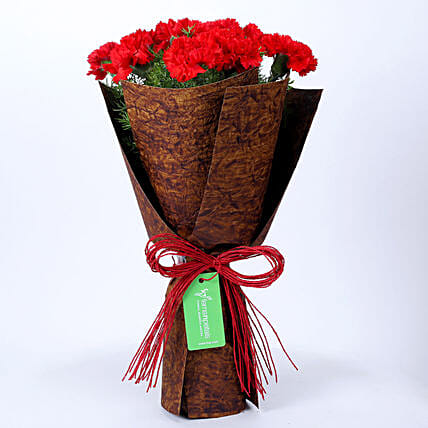 12 Red Carnations in Brown Handmade Paper: