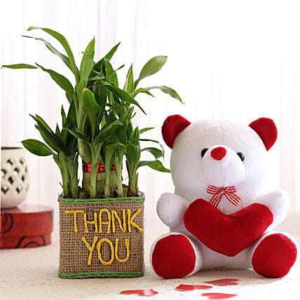 2 Layer Lucky Bamboo In Thank You Vase With Teddy Bear:
