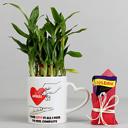 2 Layer Lucky Bamboo Plant with Cadbury Dairy Milk:
