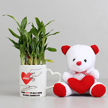 2 Layer Lucky Bamboo Plant with Teddy Bear Combo: Plant Combo For Valentines Day