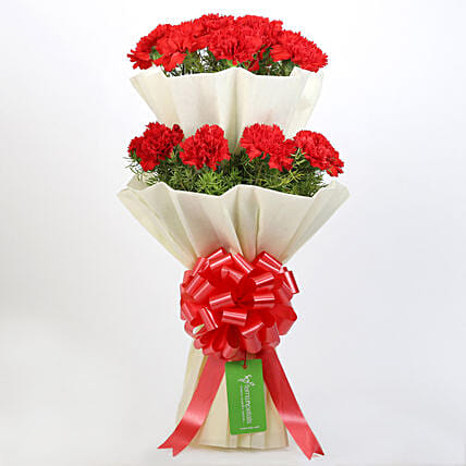 Beautiful 2 Layered Red Carnations Bouquet: Flower Bouquets