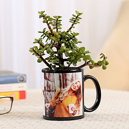Black Personalised Mug With Jade Plant: