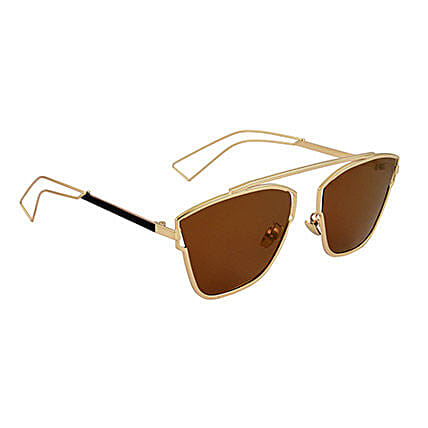 Brown Square Unisex Sunglasses: Sunglasses
