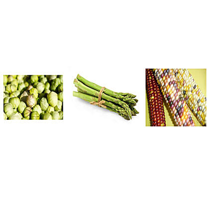 Brussels Sprouts & Coloured Corn Seeds Combo: Exotic Plant-seeds