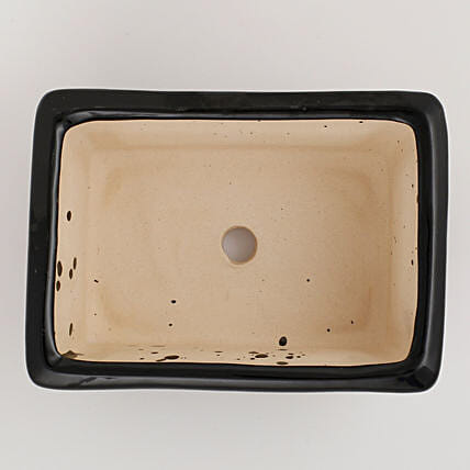 Ceramic Rectangular Bonsai Tray Black: Pots for Plants