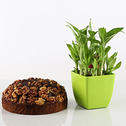 Dry Cake With 2 Layer Bamboo Combo: Gift Combos