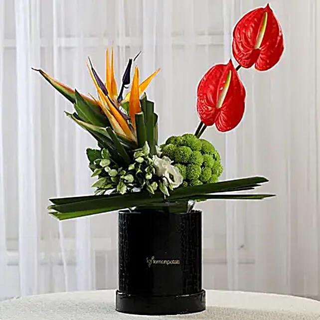 Exotic Box of Anthuriums & Bird of Paradise: Anthuriums
