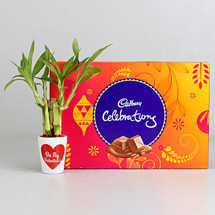 Lucky Bamboo Plant in Valentines Pot & Cadbury Celebrations: