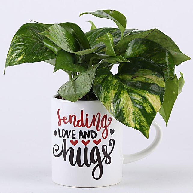 Money Plant In Love & Hugs Mug: Buy Indoor Plants