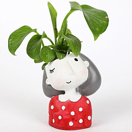 Money Plant In Winking Girl Raisin Pot: Air Purifying Plants