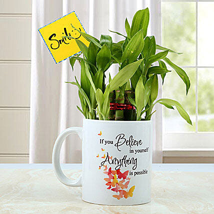 Mug with Bamboo Plant: Exotic Plant Gifts