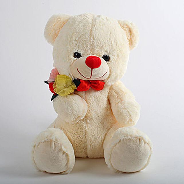 Mushy Teddy Bear: Gifts for Hug Day