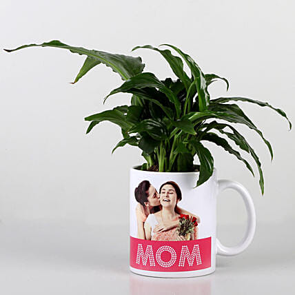 Peace Lily In Personalised Mug For Mom: Personalised Pot plants
