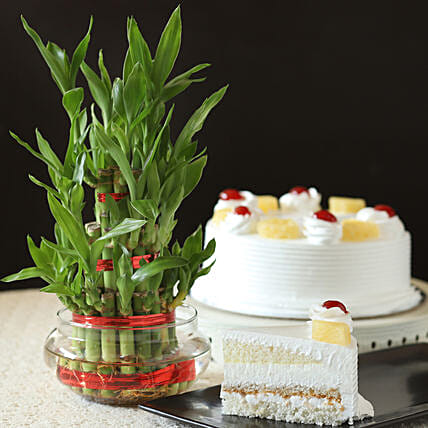 Pineapple Cake With Three Layer Bamboo Plant: