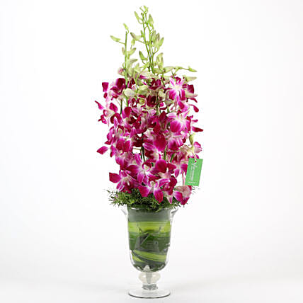 Purple Orchids Vase Arrangement: Flowers for Anniversary
