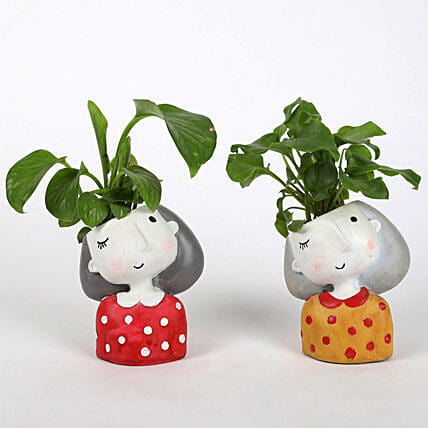 Set of 2 Lively Plants In Raisin pots: Spiritual Plant