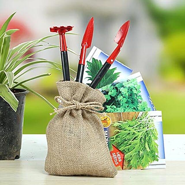 Special Herbs Hamper: Send Organic Seeds