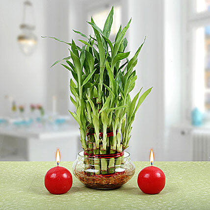 Three Layer Bamboo Plant With Red Candles: