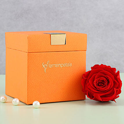 Timeless- Forever Red Rose in Orange Box: Send Roses