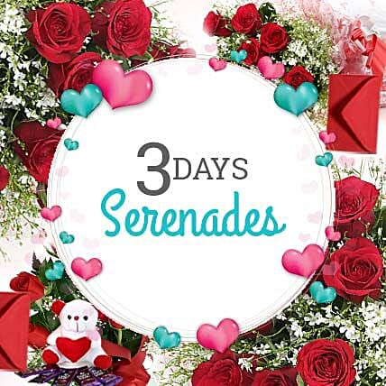 3 Days Valentine Love Everyday: Send Roses And Teddies