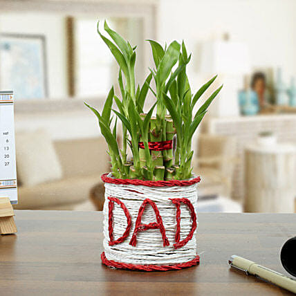 A Lucky Gift For Father: Exotic Plant Gifts