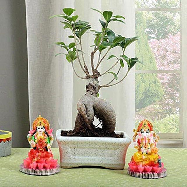 Ficus Micro Carpa Bonsai Combo: Laxmi Ganesha Idol Gifts