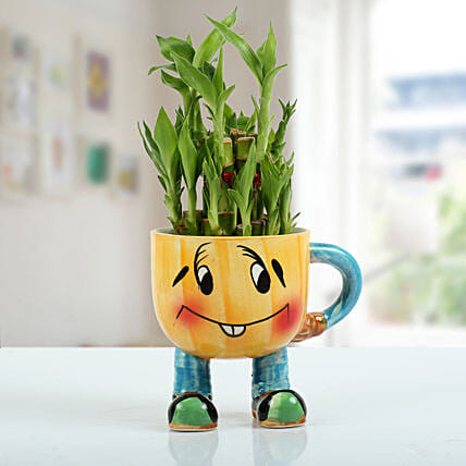 Two Layer Bamboo Plant With Smiley Vase: Send Gifts to Davanagere