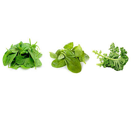 Spinach Baby Spinach & Kale Leaf Seeds Combo: Exotic Plant-seeds