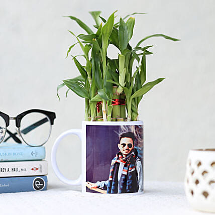Bamboo Plant in Personalised White Mug: Plant Combos