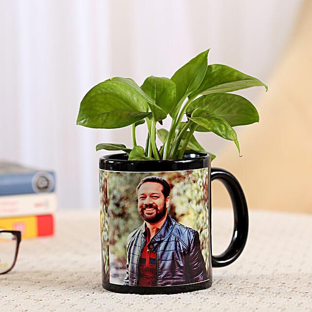 Money Plant In Stylish Personalised Mug: Good Luck Plants