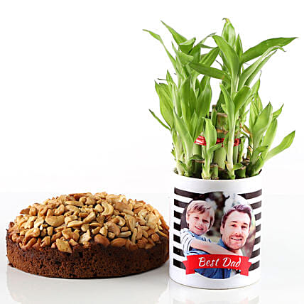 Dry Cake & Bamboo Plant In Photo Mug For Dad: Cakes Combo