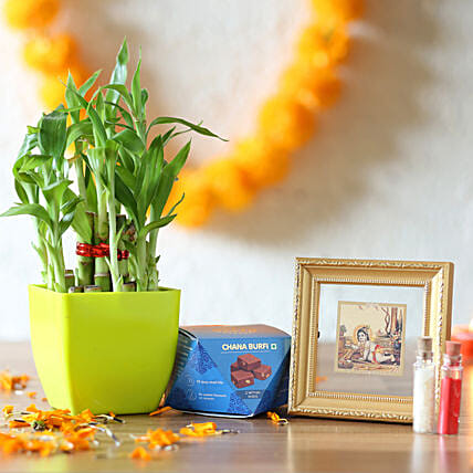 Lucky Bamboo & Gold Plated Bal Gopal Frame Combo: Indoor Plants