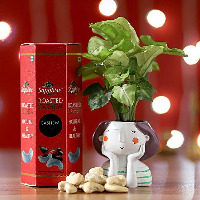Syngonium Plant & Roasted Cashews Pack: Ornamental Plants