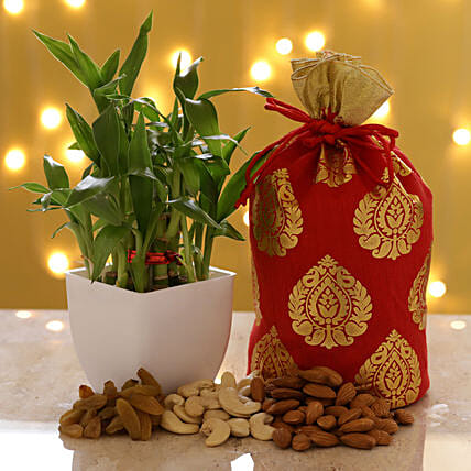 2 Layer Bamboo & Dry Fruits: Buy Indoor Plants
