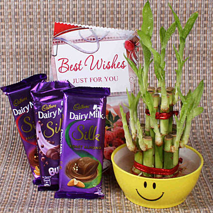 Best Wishes With Lucky Bamboo: Office Desk Plants