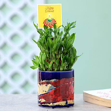 3 Layer Bamboo In Pipe Pot For Diwali: Ornamental Plant Gifts