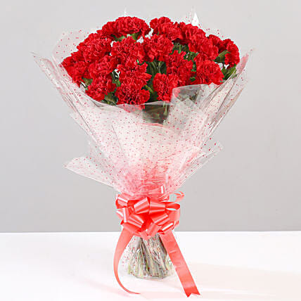 Lovely Bunch Of 24 Red Carnations: