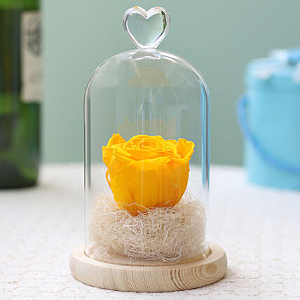 Forever Sunny Yellow Rose in Glass Dome: Forever Roses
