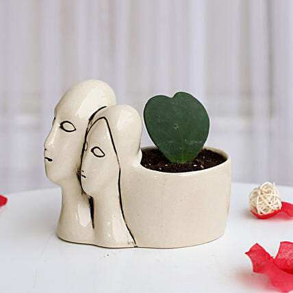 Hoya Plant in Couple Pot: Home Decor Gifts Ideas
