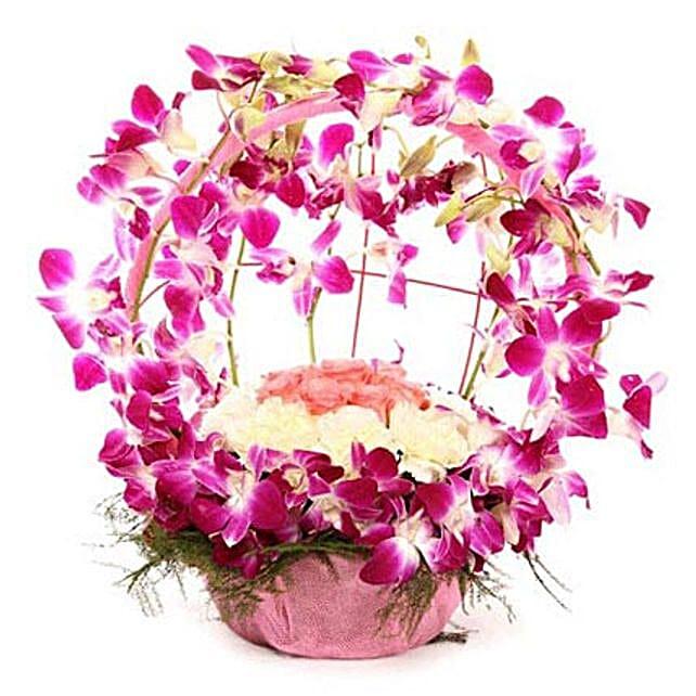 Vibrant Orchid Celebration: Send Unique Gifts