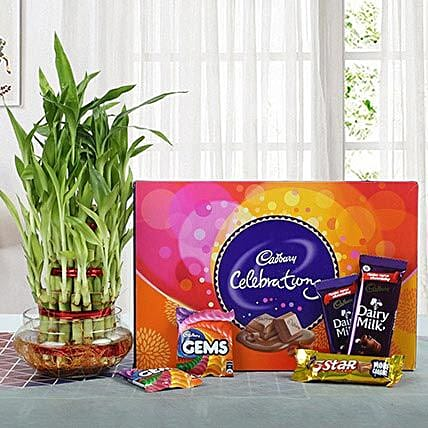 Yummy Chocolates N Three Layer Bamboo Plant: Send New Year Gift Hampers