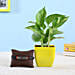 online friendship band with money plant