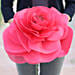 Springtime Beauty-A red coloured handmade paper flower