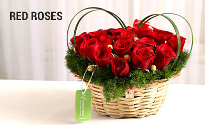 Red-Roses-desk-17-feb-2019.jpg