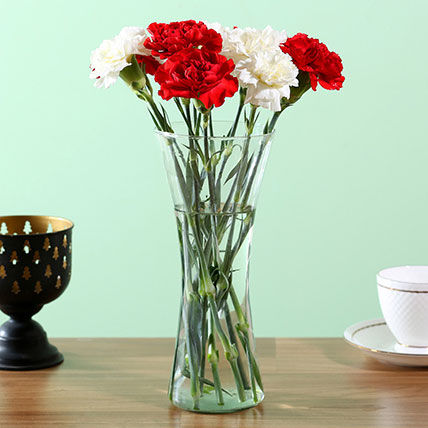 Graceful Mixed Carnations