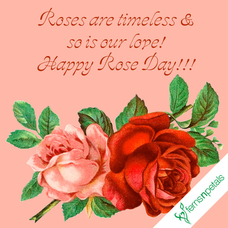 Happy Rose Day Quotes Wishes N Greetings Rose Day 2019 Ferns N