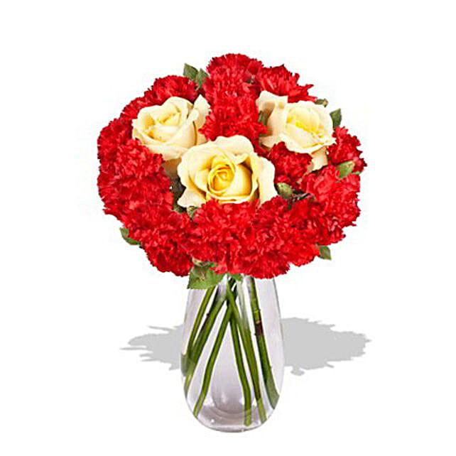 Carnation Delight