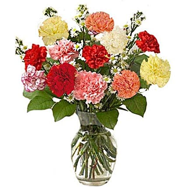 12 Multi color Carnations in Vase