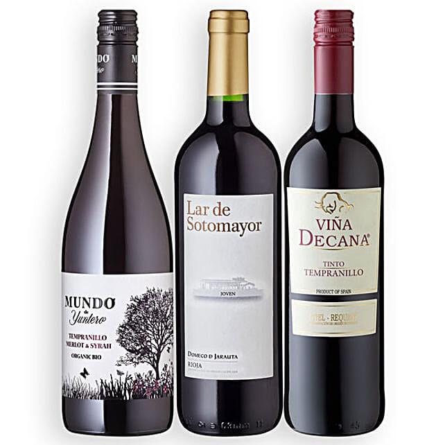 Fiesta Espana with 3 Bottles of Wine